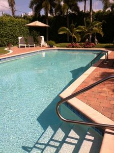 Our 38'x18' pool nestled in our landscaped and hedged back yard