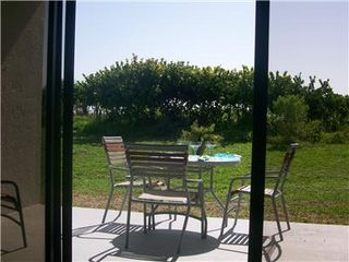 Cape Canaveral condo photo - Grassy Patio