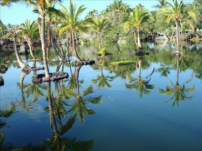 Mauna Lani's sacred  ancient fishponds