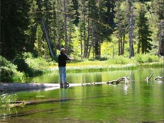 Mammoth Lakes condo photo - Great fishing too.