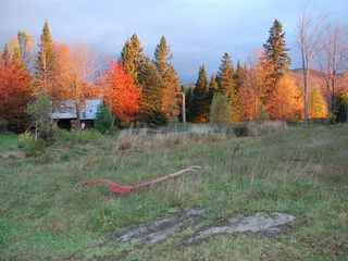 Eden property rental photo - Fall colors