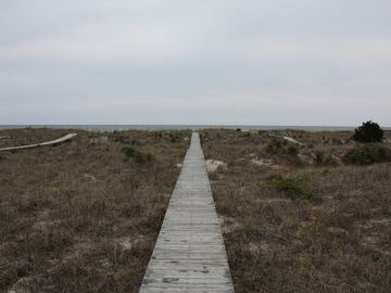Walkway to the beach, through the dunes.