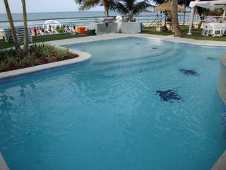 Arecibo villa photo - Beautiful beach front swimming pool !!!