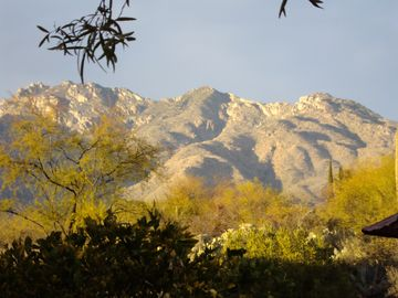 """Sweet Views"" of Santa Catalinas, Rincon, & Tucson Mountains"