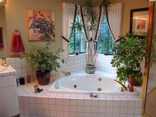 Tiburon house photo - Spacious master bath with spa tub.