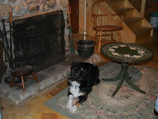 Woodstock lodge photo - Our dog Ginger loves Camp Mollocket. So will yours.