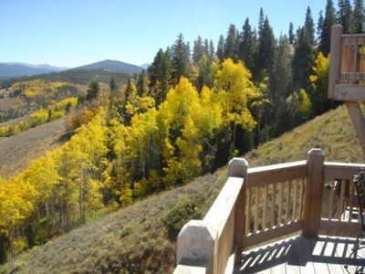 Beautiful views of the Aspens in the Fall