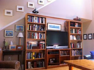 books and media wall, large flat screen tv for movies