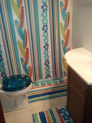Ludington cottage photo - Full bath
