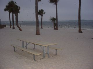 Hernando Beach house photo - Picnic anyone?