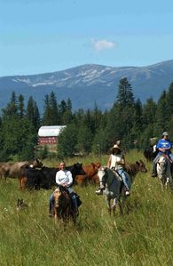 Sandpoint house rental - Horseback riding is available at Western Pleasure Guest Ranch