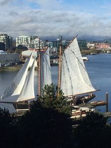 Tall ship raising their sails right outside our window