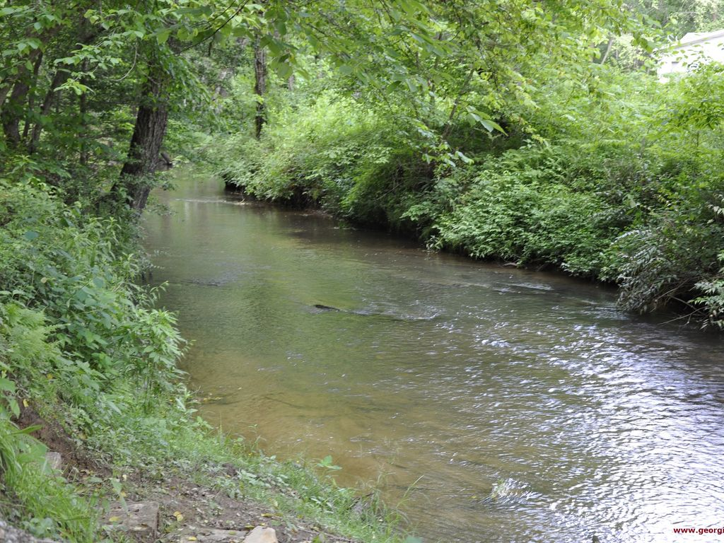 Little singing creek to fish in this cozy secluded bend for Small creek fishing