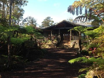 Volcano estate rental - Morning at the Volcano Rainforest Lodge