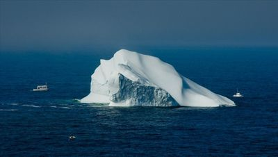 Iceberg with tour boats off Twillingate Island