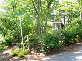 Sag Harbor cottage photo - The House is Surrounded by Trees on this Quiet Corner