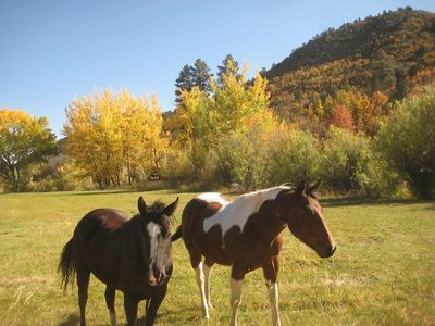 Bryce Canyon cabin rental - Working horse ranch at HappyOurs will delight everyone