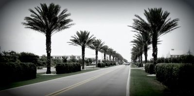 "Drive Scenic 30a! 15 mile stretch showing off ""The Beaches of South Walton"""