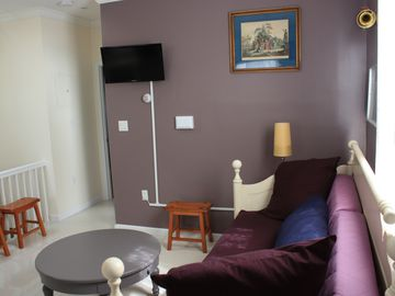 Queens apartment rental - Living Room, sofa bed and Web TV