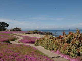Pacific Grove house photo - Miles of beautiful walking trails are just steps from this lovely home.