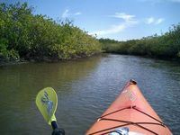 BAY VIEW - BAY ACCESS - KAYAK - HORSE - COUNTRY LIVING WITH CITY LIFE 5MINS AWAY
