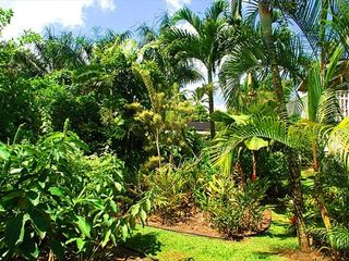 Hanalei house photo - Lush tropical garden in our backyard with fruit trees.