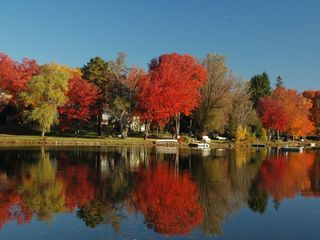 Penn Lake cottage photo - Fall Foliage