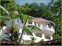 Secluded Home in the Rainforest A Few Steps to the Beach mynewfeed A Few Minutes to town