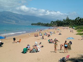 Kihei cottage photo - Kamaole 1 is also 2 miles down the road.