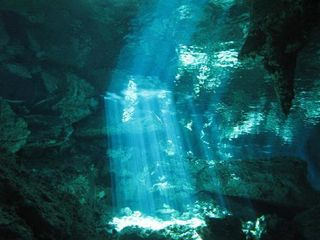 Tulum apartment photo - Cenotes (Fresh water caverns for snorkling and diving)