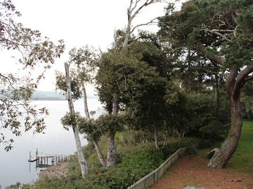 Overview of the front yard and meadow on the edge of Tomales Bay.
