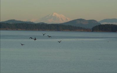 View to Mount Baker across Roberts Bay from Sun Room