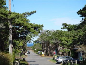 Wellfleet house rental - Very short stroll to the beach. Hear waves at night you're so close