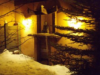 Taos estate photo - Winter meditation in back garden