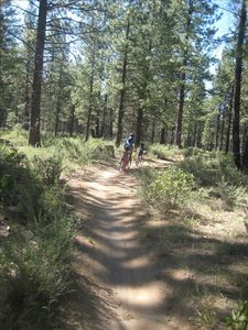 Phils Trail - world renowned mountain biking trails. Accessible from the house.