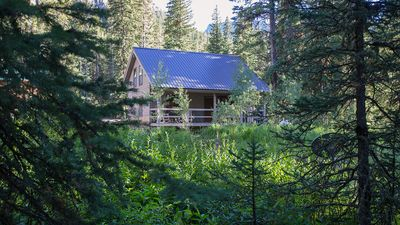 Winter Discounts: Silver Willows Ursa Cabin on 4 Acres by the Creek
