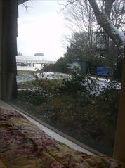 Branford bungalow photo - View from queen murphy bed, watch the boats and birds