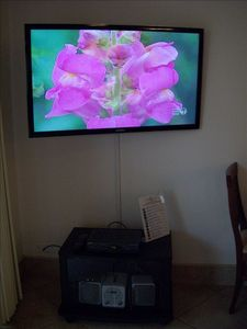 46 inch LED HDTV in family room (with FREE streamed Netflix movies!)