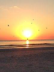 Siesta sunset - Siesta Key condo vacation rental photo
