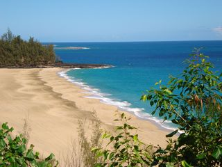 Princeville house photo - One of many Beaches near our home