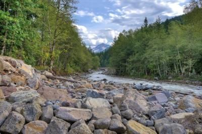 Extensive Trail System From Cottage Along Sandy River