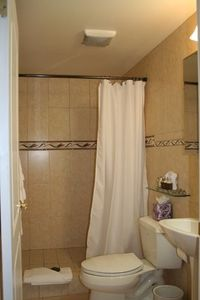 third bathroom with shower behind living room.