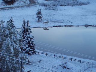 Woodland Park house photo - Trout Pond in Early Spring Snow