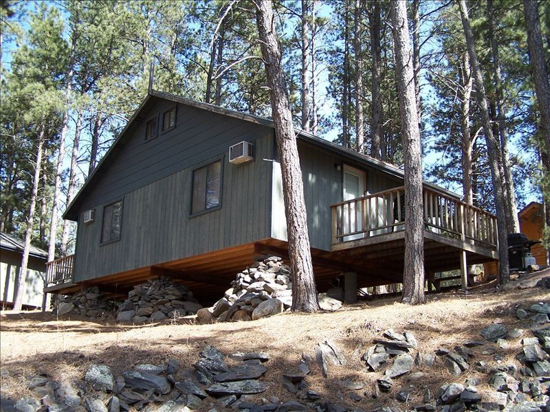 Affordable Cabins Nestled In The Pines With Mountain Views