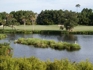 Kiawah Island villa photo - Golf courses and lagoons on Kiawah