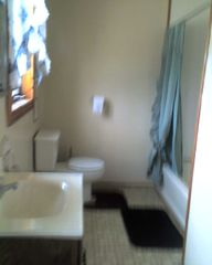 Bathroom part 2 - Pulaski house vacation rental photo