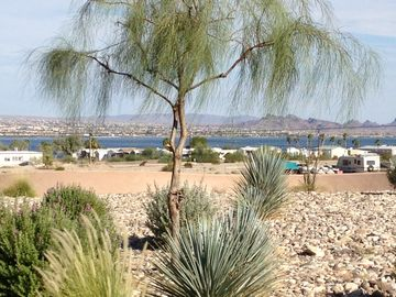 Needles house rental - Our view of the Lake. Lots of open space. Our place is in a gated community!