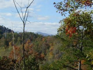 Bryson City cabin photo - Distant mountain view. Free upgrade to 61 jet hot tub. Star filled night sky