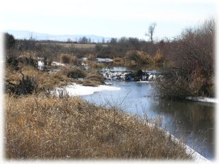 Bozeman house photo - Winter view of the creek
