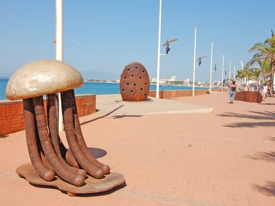 This Jellyfish Always Catches Everybody's Eye! .....(Right On The Malecon)....